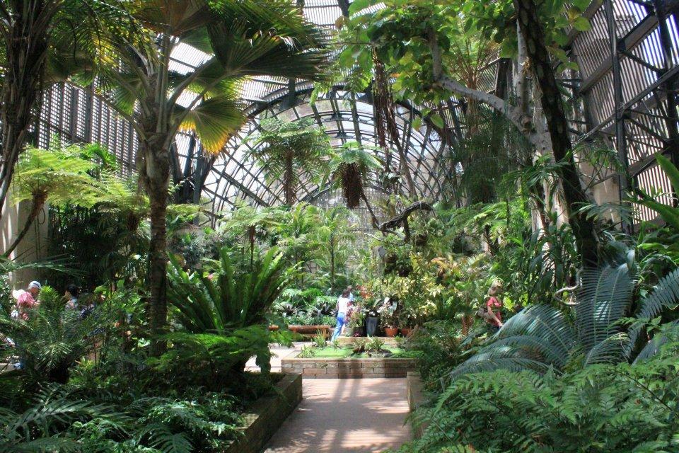 Attrayant ... Botanical Garden In Balboa Park Whenever Itu0027s Open. Check ...