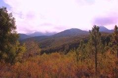 Matilja Creek