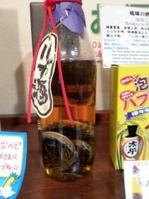 Habu Sake Ryukyu Mura