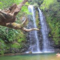 Hiking Tadake Falls