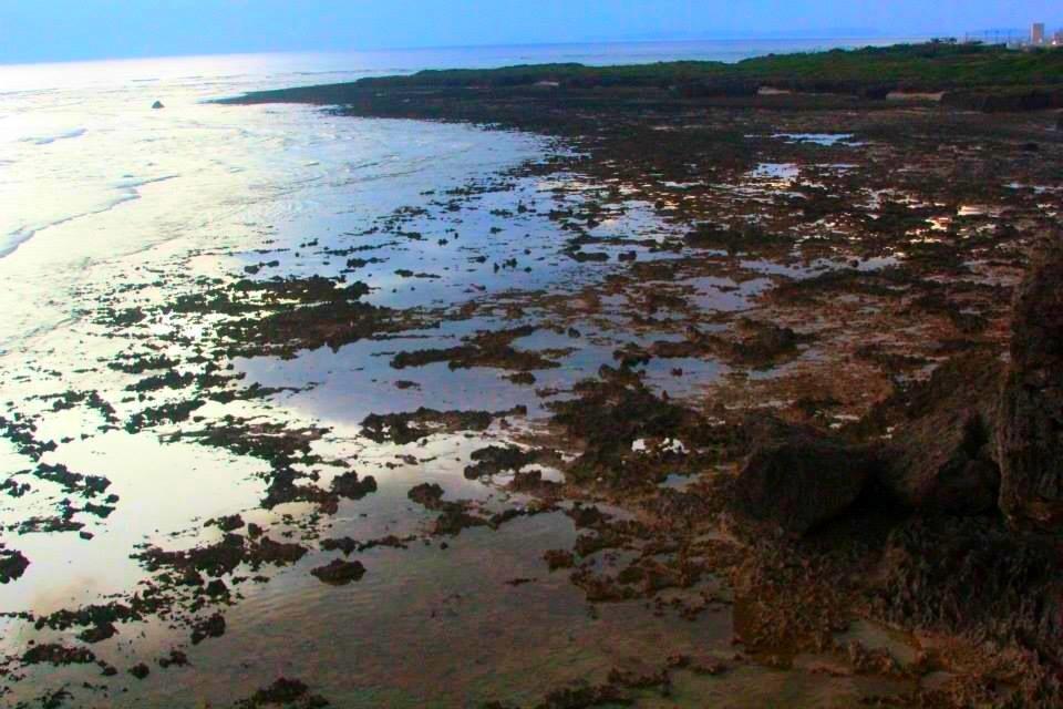 Cape Kyan8