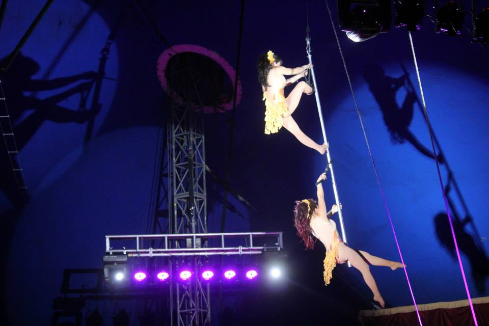 Circus Caballero
