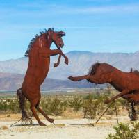Metal Sculptures in Anza Borrego Part I