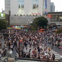 Pedestrian, Pedestrians, Pedestrians Everywhere on Shibuya Crossing